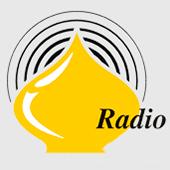 Радио Orthodoxia (18:00-22:00)