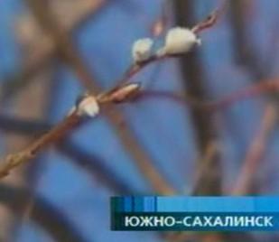 православные знакомства в южно сахалинске